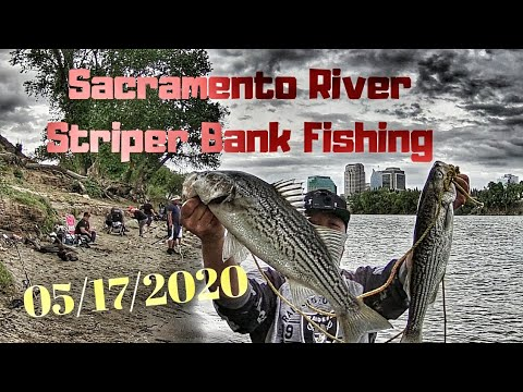 Sacramento River Striper Bank Fishing (05/17/20)