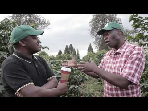 Coffee Grower Testimonial