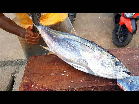 TUNA FISH CUTTING | FRESH FISH CUTTING SKILL | කෙලවල්ලා