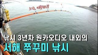 2019 서해 쭈꾸미낚시 남당항 라마르호 주꾸미 낚시배 바다낚시 부부조사 아산 원카오디오