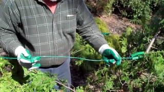 Straightening Up a Tree