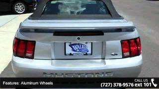 2004 Ford Mustang Base - Walker Ford - Clearwater, FL 33764