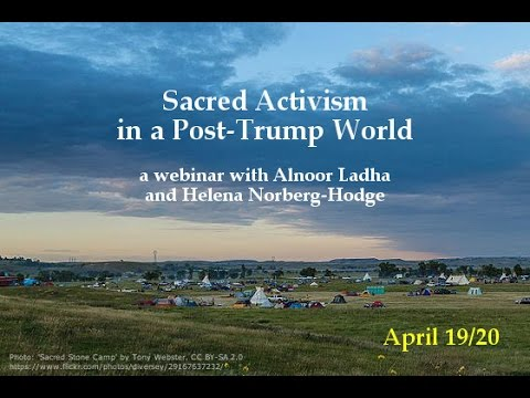 Sacred Activism in a Post-Trump World