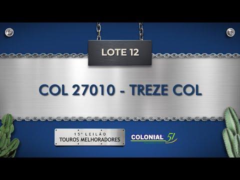 LOTE 12   COL 27010