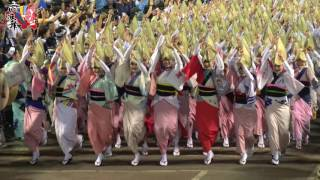 2016.08.15 德島阿波舞祭最終日-南內町第二部總舞VIP特別席「4K畫質」
