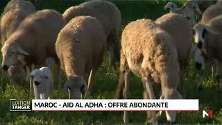Aid Al Adha: une offre abondante pour le Maroc