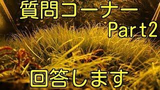 【アクアリウム】質問にお答えします♪Part2(2000人突破記念)