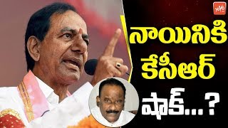 CM KCR Gives Shock To Nayini Narsimha Reddy | TRS | Telangana News | Mahakutami | YOYO TV Channel