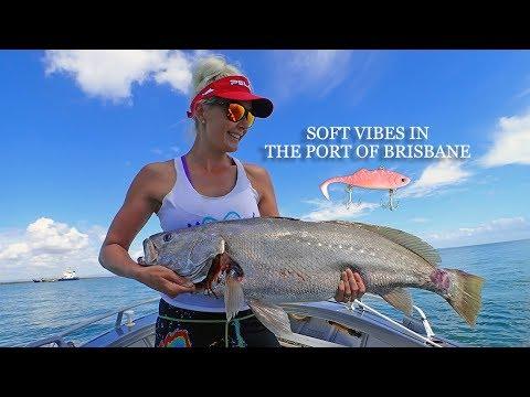 Fishing The Port Of Brisbane