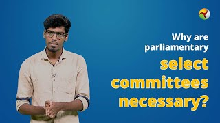 Why are parliamentary select committees necessary?