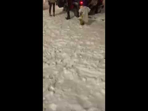 Travis - This Lady Tried To Run Over Some Guys That Threw Snowballs At Her Car