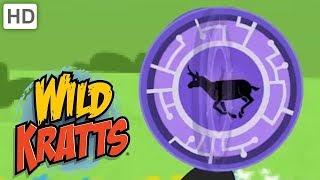 Wild Kratts 🦁 Dangerous Creature Moments! | Kids Videos