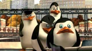 Die Pinguine Aus Madagascar - Tauziehen