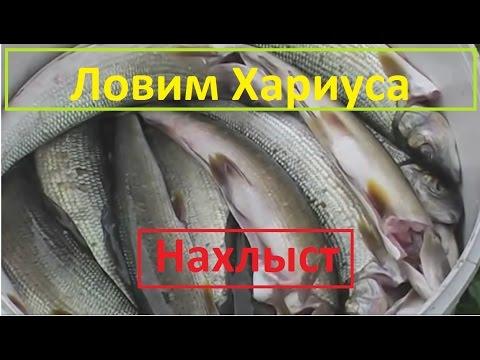нахлыстовая рыбалка в пермском крае