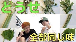 【検証】「山菜」って別にどんな植物でもいいんじゃね?