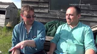 Gardening channel: Meeting Aaron's Allotment | SEAN'S GARDEN TRAVELS