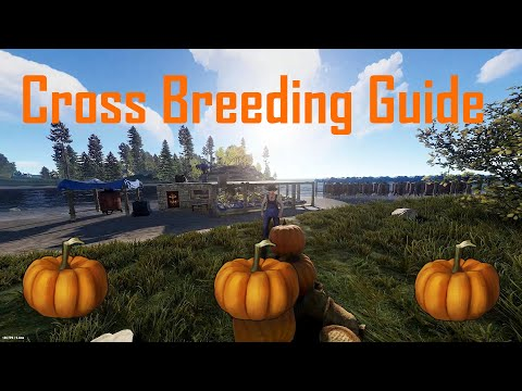 Rust | Cross Breeding Guide