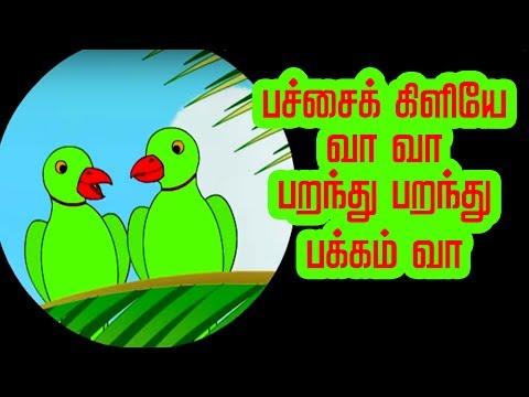 பச்சை கிளி - Pachai Kili   Tamil Nursery Rhymes for kids