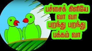 பச்சை கிளி - Pachai Kili | Tamil Nursery Rhymes for kids