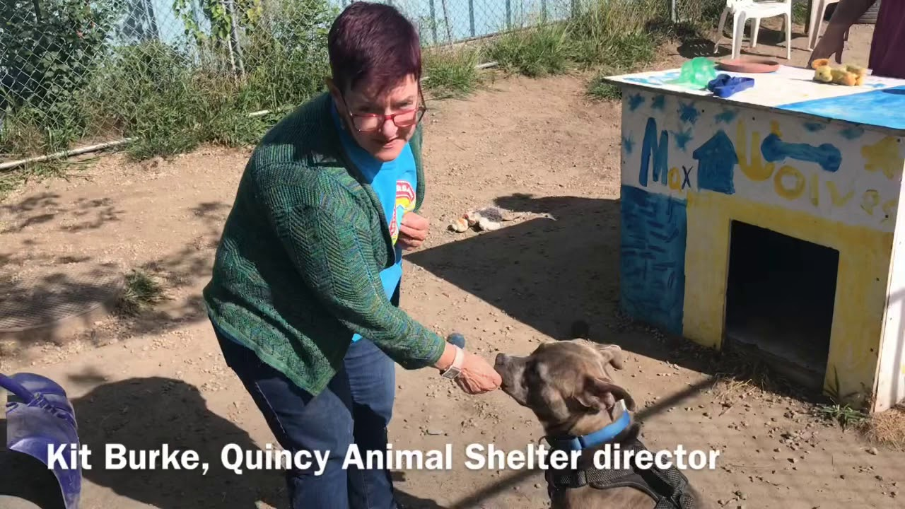 Quincy Animal Shelter celebrates 20 years