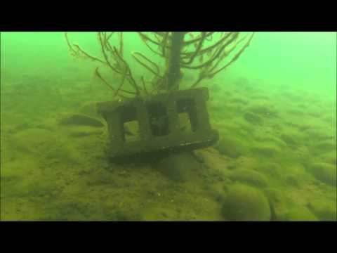 Grindstone lake scuba diving 2013 (HD)