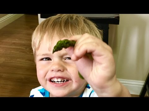 TODDLER VEGETABLE EATING CHALLENGE!