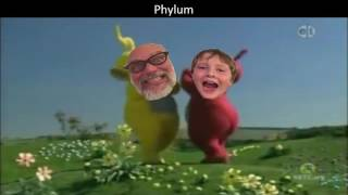 Classification of Organisms Song (Teletubbies Theme Parody) thumbnail