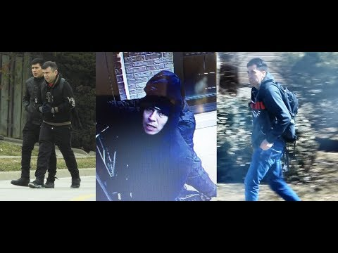 Halton Police break up massive theft ring