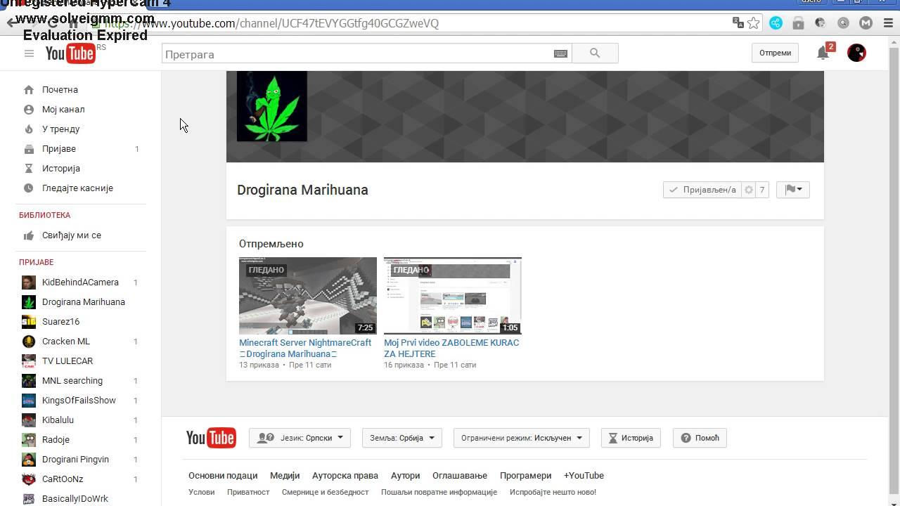 Kurac tube search videos