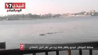 صحافة المواطن.. فيديو يظهر بقعة زيت فى نهر النيل بالمعادى