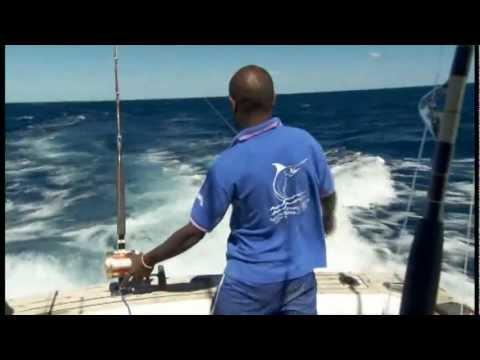 Game Fishing In Vanuatu With E.T On Shogun