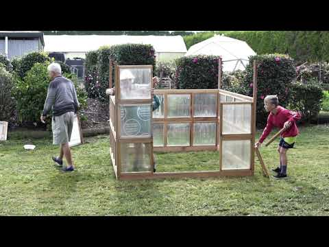 An Easy DIY Wooden Greenhouse