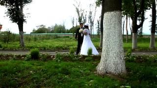 Свадебная видеосъемка Киев - silyava studio(, 2012-09-29T19:33:51.000Z)