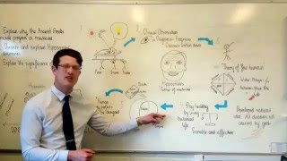 GCSE history: Hippocrates in Five Minutes