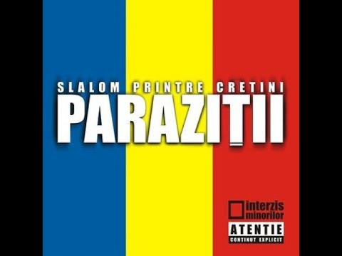 Parazitii - Something to say feat Raekwon (nr.26)