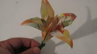 Make an Origami Iris (flower)