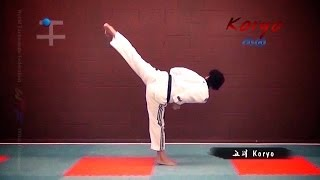 #Taekwondo Forms (Poomsae) | Video App Black Belt Poomsae Trailer | TaekwonWoo
