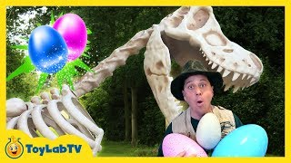 Giant T-Rex Dinosaur Surprise in Kids Dinosaurs Toy Opening
