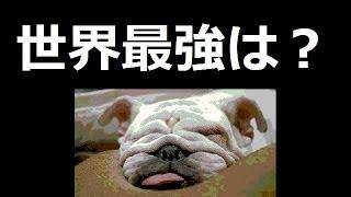 出典:暇つぶしニュース(2chまとめ) http://blog.livedoor.jp/rbky...