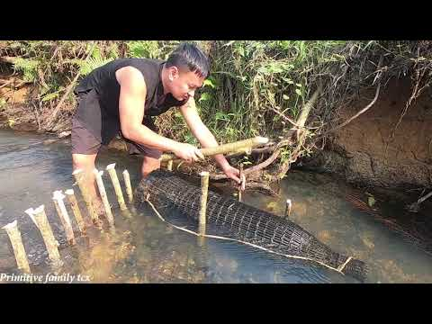 Survival Skills - Primitive Life - Set Traps To Catch Fish That Swim Upstream Water
