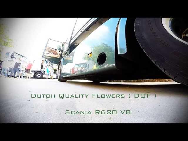 Dutch Quality Flowers - Scania R620 at Truckshow Numansdorp