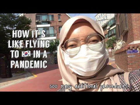 Flying To South Korea In A Pandemic | Proses Balik Ke Korea Dari Malaysia