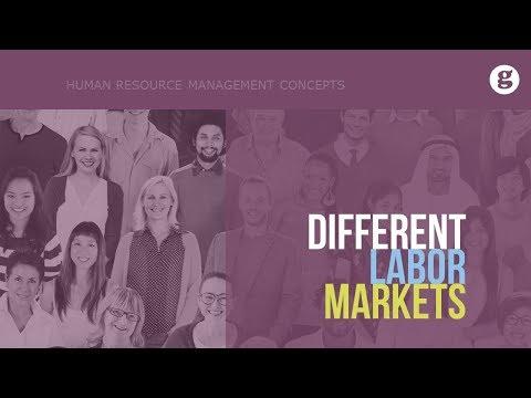 Different Labor Markets