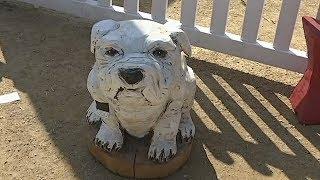 Скульптуры бензопилой: необычное увлечение австралийки (новости)