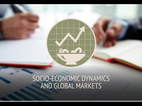 Feeding Knowledge BSDPs week - SOCIO-ECONOMIC DYNAMICS AND GLOBAL MARKETS