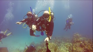 Diving In Dominican Republic; Catalina Island