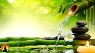 🔴 Relaxing Music 24/7, Meditation Music, Healing Music, Spa Music, Zen, Sleep, Yoga, Study Music