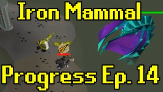 Oldschool Runescape - 2007 Iron Man Progress Ep. 14 | Iron Mammal