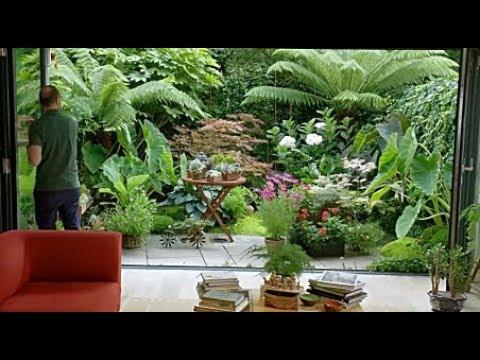 Small Tropical Garden Ideas 1 Youtube