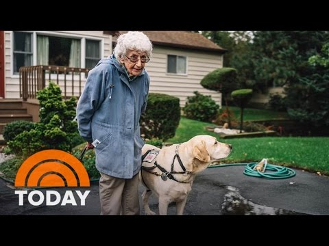 Day In The Life Of A WWII Veteran And Her Service Dog | TODAY